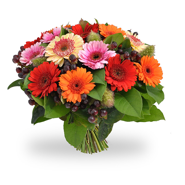 Mixed gerbera bouquet large