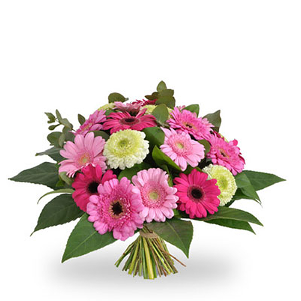 Mixed gerberas pastel large