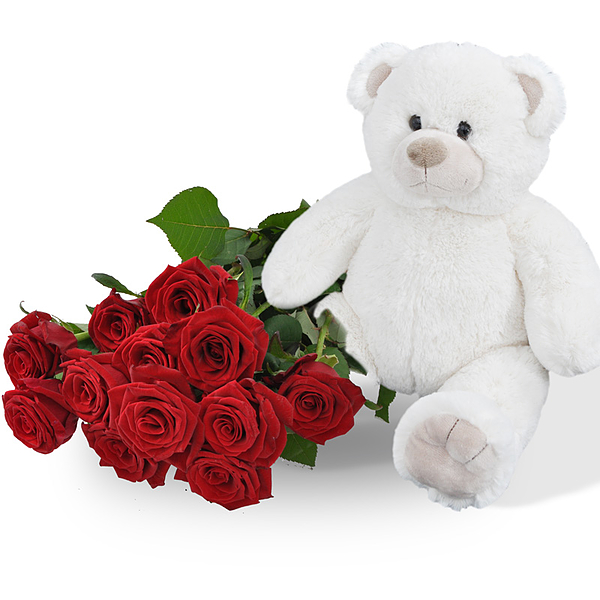 Teddy + 10 red roses