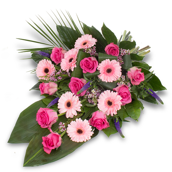 Pink Polestar XL (50cm)