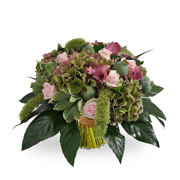 Hortensis Bouquet standard