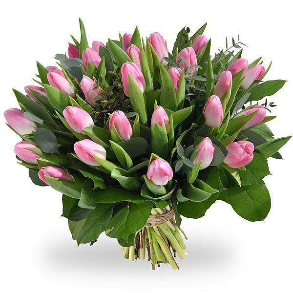 Boeket roze tulpen XL