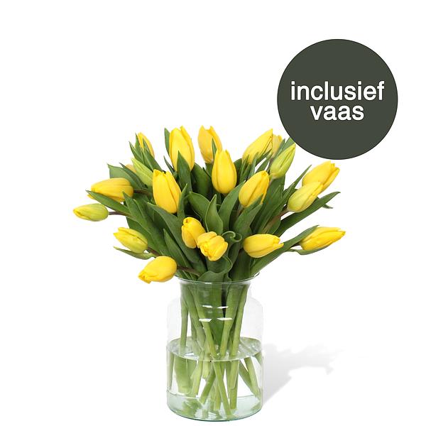 Tulpen Geel incl. vaas