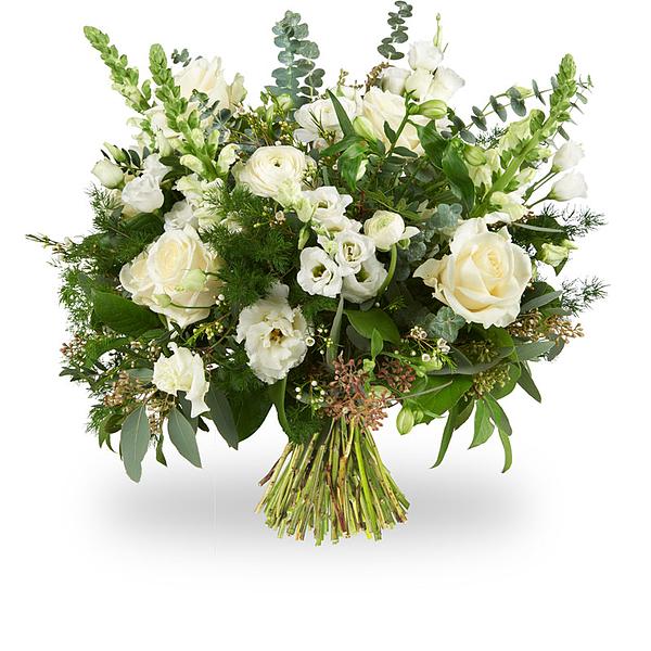 Bouquet Feline standard