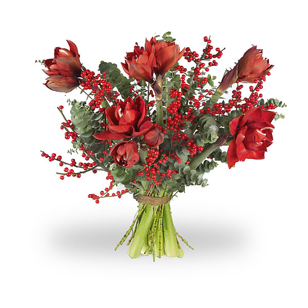 Bouquet Amaryllis Red Large