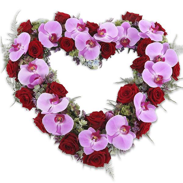 Heart Purple Red (55cm als afbeelding)