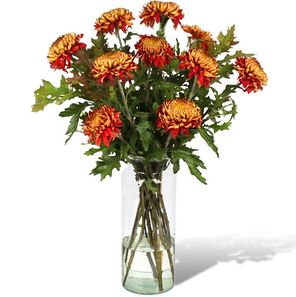 Bouquet Jeannette XL