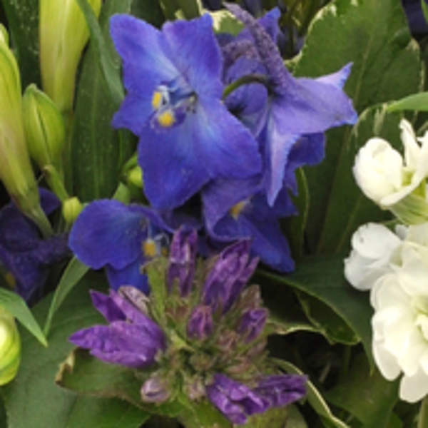 Boeket blauw - paars middel