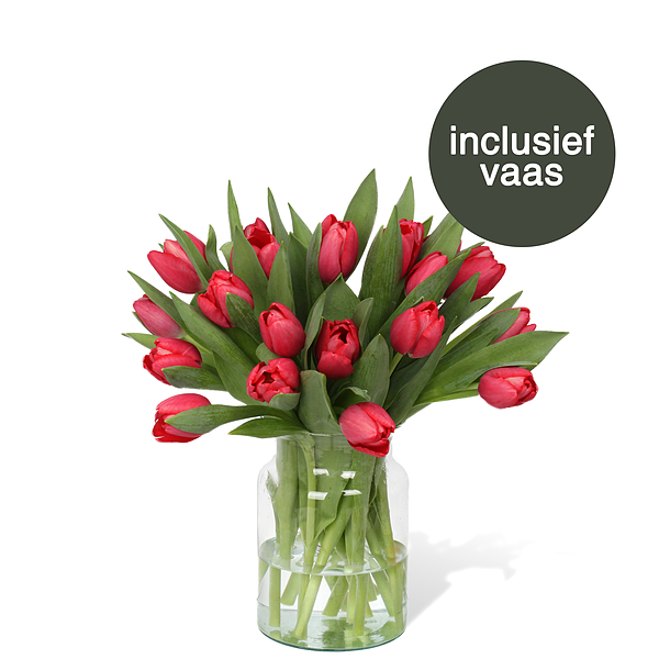 Tulpen Rood incl. vaas