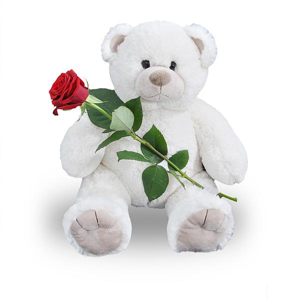 Knuffelbeer wit met rode roos