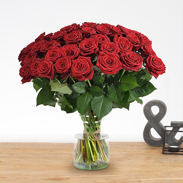 20 lange rode rozen