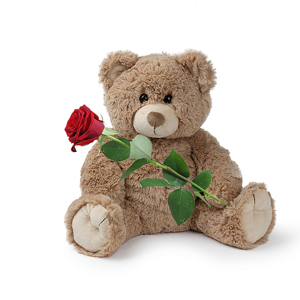 Teddy (braun) with red rose
