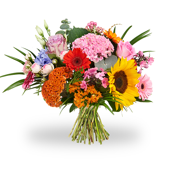 Colorful bouquet of field flowers