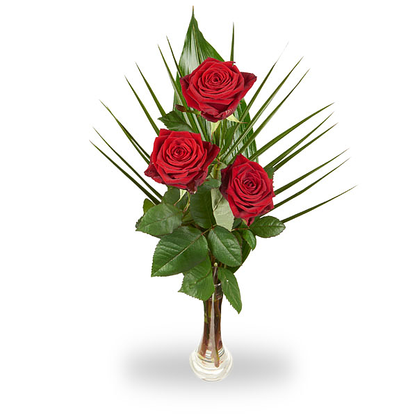 3 Red roses with greens and vase