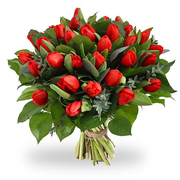 Boeket rode tulpen XL