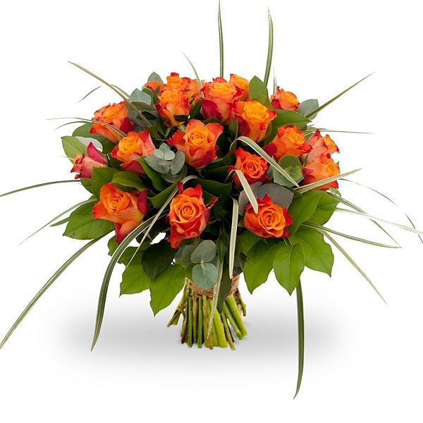 Oranje rozen groot