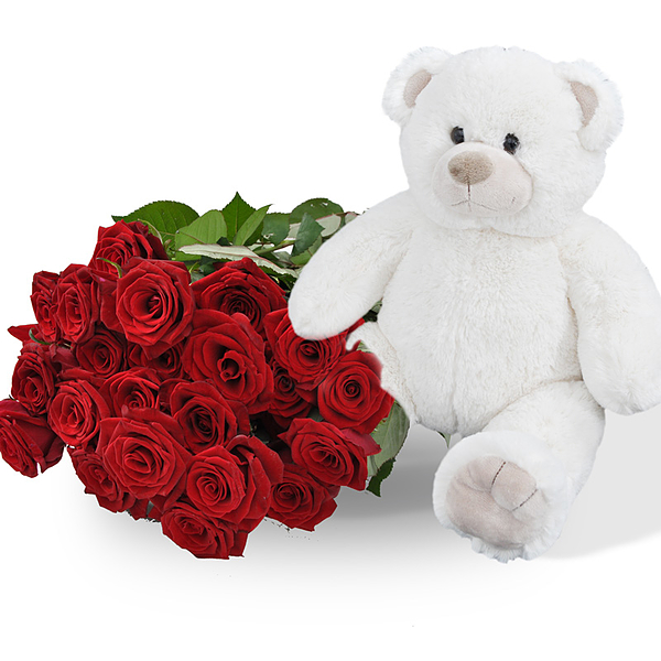 Teddy white + 25 red roses