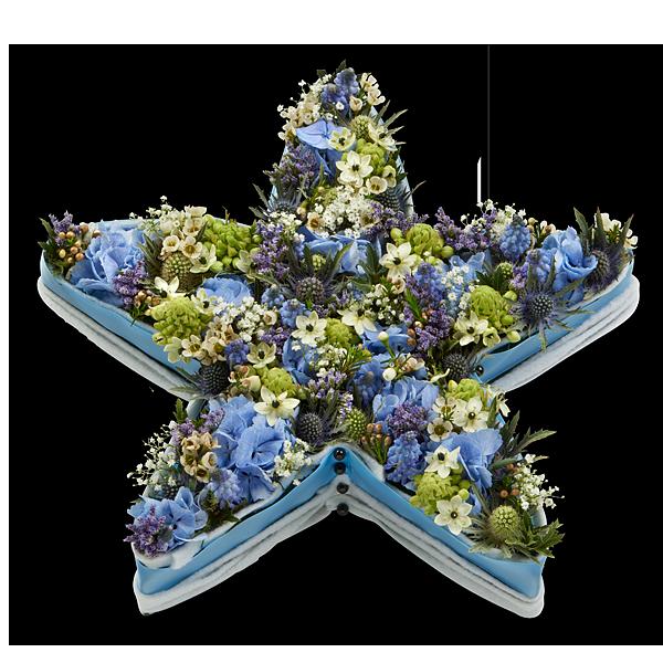 Blue Star  (40 cm art. 2910) als afbeelding