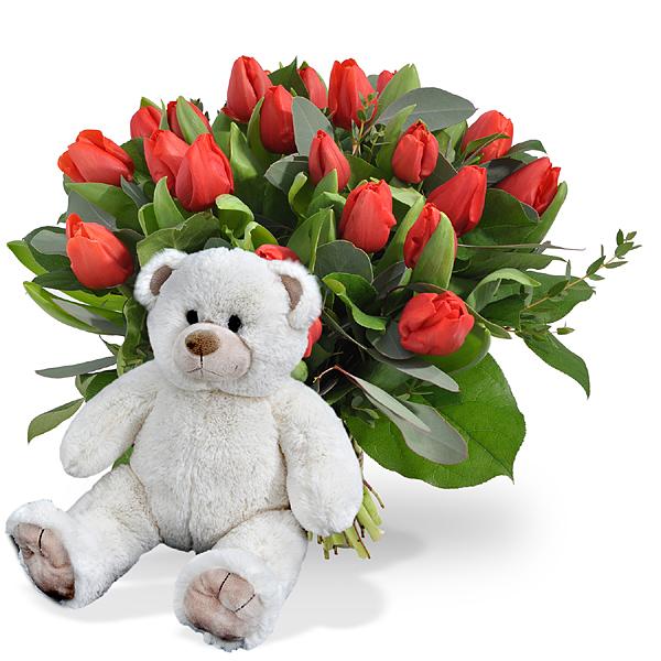 Rode tulpen groot + witte knuffel