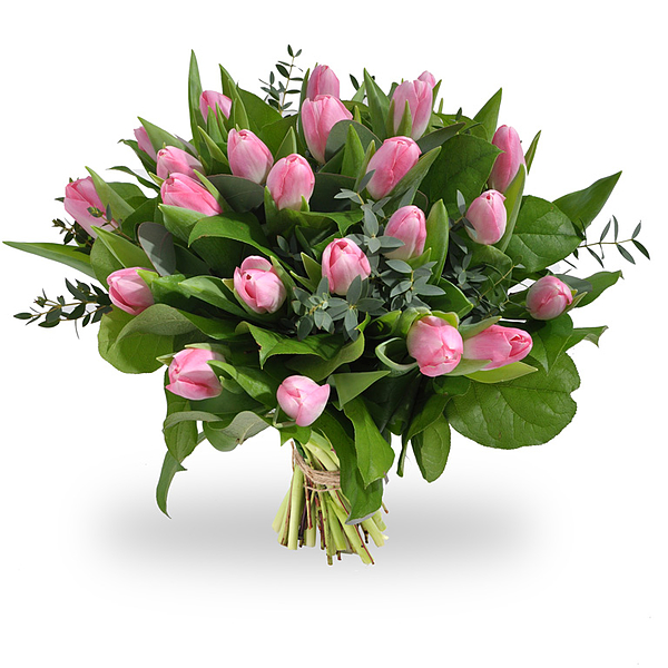 Roze tulpen medium