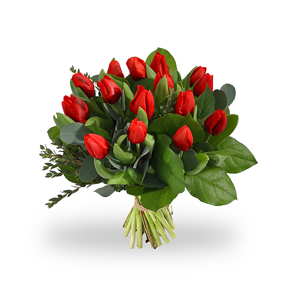 Boeket rode tulpen standaard
