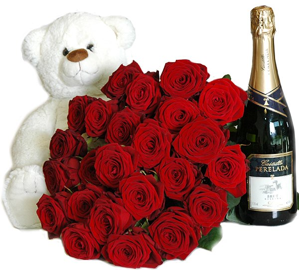 Teddy + 24 roses + Champagne