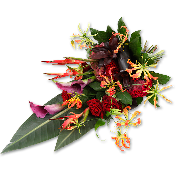 Caribea (60cm als afbeelding)