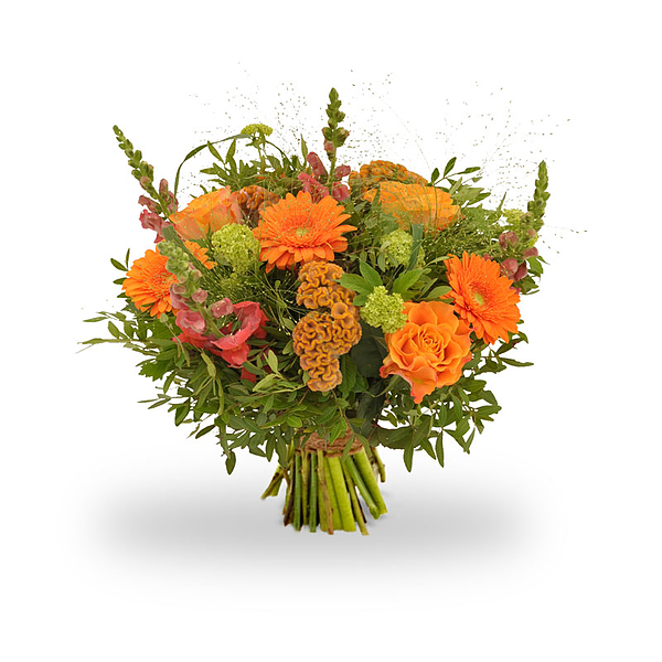 Happy orange standaard